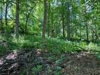 Plot For Sale In West Ave Red Wing, Minnesota