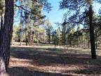 Plot For Sale In Grants, New Mexico